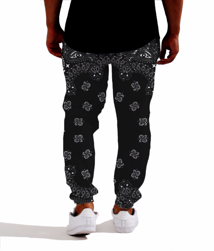 Paisley cult joggers back